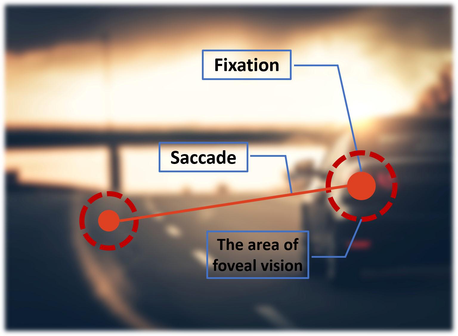 fix_saccade